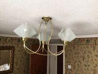 Ceiling Light Fitting 3 ArmTulip Brass/Gold Modern