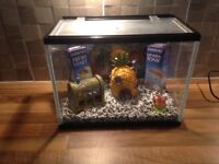 small starter tank with gravel and ornaments. just £10.00
