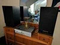 Celestion 120w speakers