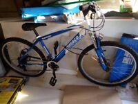 """Boys 26 """" Wheel Bike"""