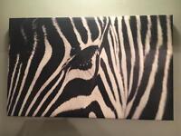 Canvas Art - Zebra