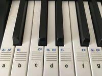Digital Piano Casio CDP-120