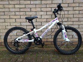 "20"" Saracen Bike"