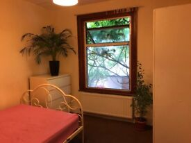 Room to let in well established house share