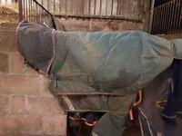 Horsewear rhino turnout rug