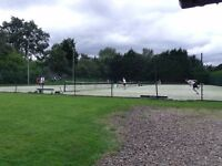 Tennis players wanted for team matches