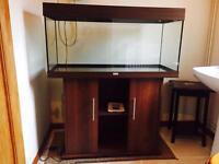 Juwel Rio 180 aquarium and stand - For Sale