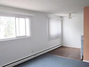 1 Bedroom -  - Luxor Manor - Apartment for Rent Edmonton Edmonton Edmonton Area image 2