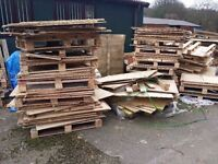 Free Wood Ply Wood Pallets and Sheets of Wood Various Sizes