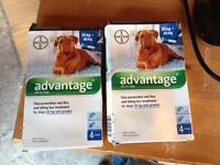 8 x Advantage 400 for dogs 25-40kg