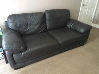 Harvey's dark brown leather sofa and armchair