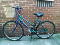 Mountain Bike and a Ladies Bike with Child seat