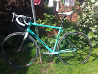 Stolen Bianchi Bicycle from Hornchurch