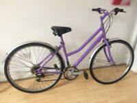 Lady City Bike - Reduced now 79