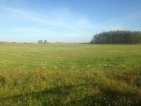 For Sale - Building plot with planning permission and 15 acres of land, Cuminestown / Turriff area