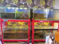 FISH BREEDING TANKS AND STANDS