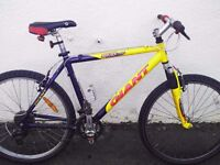 Giant Boulder team sports series mountain bike - aluminium frame