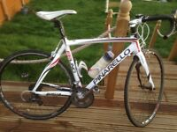 Pinarello Fp uno 2013 for sale.