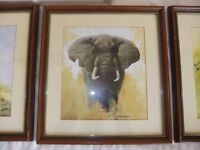 DAVID SHEPHERD PRINT OF A ELEPHANT IS SIGNED IN PENCIL BY DAVID SHEPHERD IN EXCELLENT CONDITION £28