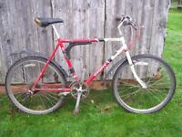 Classic retro 1989 Giant Sierra Mountain Bike for renovation project