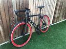 Goku London Carbon Fibre Single Speed Road Bike RRP £250