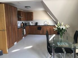Fabulous furnished 2 bedroom penthouse apartment with 2 bath/shower rooms, available now