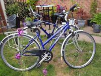 Raleigh pioneer 160 Ladies and gents bikes great condition,suspension 21 gears gel seats