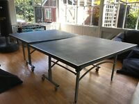 Butterfly Outdoor Table Tennis Table