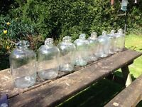 Glass demijohns for sale