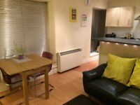 Spacious Fully Furnished City Center Apartment for Lease