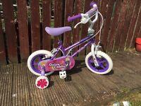 Daisy Chain girls bike