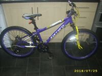BARGAIN PRICE Carrera Luna Purple 24 Inch Wheel Girls Junior Mountain Bike Good Condition Quick Sale