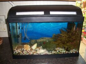 Tropical Fish Tank & Lots of Accessories to be up and running
