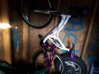 Girls Avigo Mountain bike