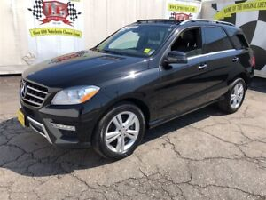 2015 Mercedes-Benz M-Class ML 350 BlueTEC, Navigaton, Leather, D