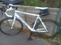Carrera Virtuoso Road Bike. 54cm Frame. Suit 5'7-6'3. 16 Speed Claris gears. Mint condition