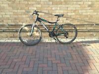 Muddy fox Devine 200 ladies bike