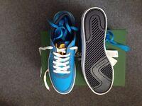 Mens Lacoste shoes