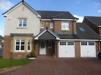 Harlequin Court, Meikle Earnock, ML3 8SW (Private Letting)