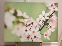 Large Blossom Canvas, pink & green
