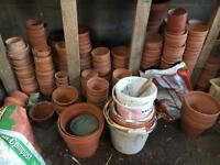 Terracotta plant pots, various sizes, viewings welcome