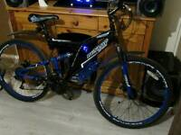 Mountain Adult Bike Immaculate Condition