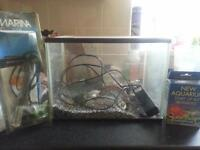 Goldys Home Small Fish Tank and Accessories