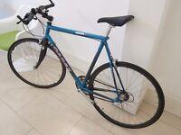 Giant Cadex carbon fibre bike! 59cm frame Campagnolo wheels