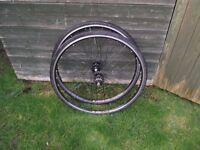 Pair Of Mavic CXP22 Single Speed 700c Race Bike Wheels. Track, Fixie, Road