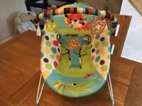 Baby bouncy seat.