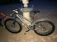 Coyote Fat Tyre Mountain Bike