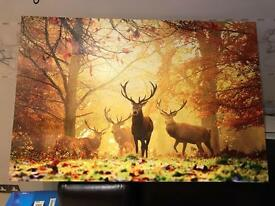 Deer style canvas