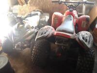 quads for sale