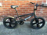 BMX Bike (Zinc bike with stunt pegs).